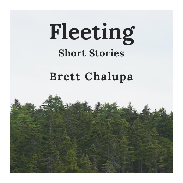 Fleeting: Short Stories Cover