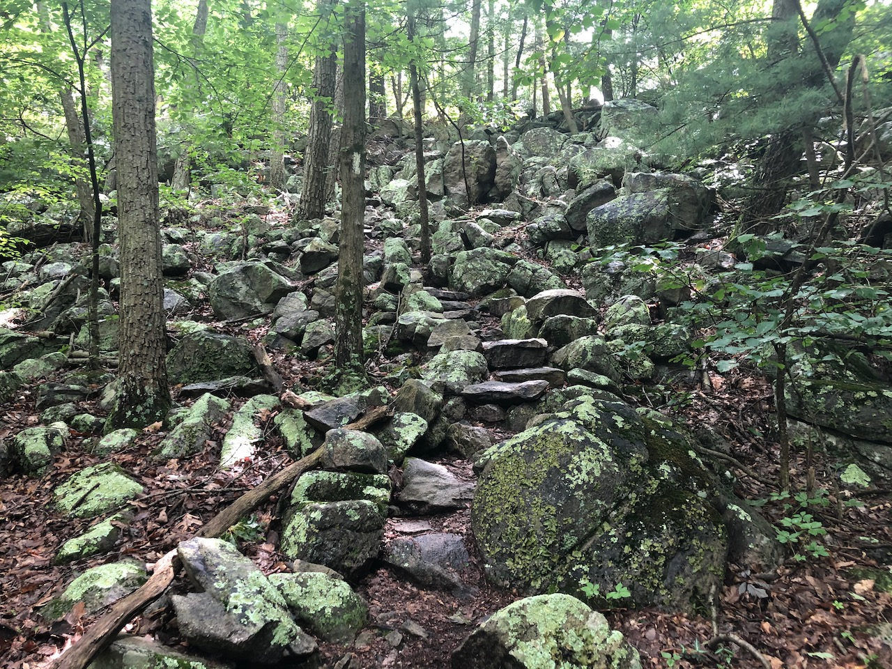 Photo of a rocky step trail