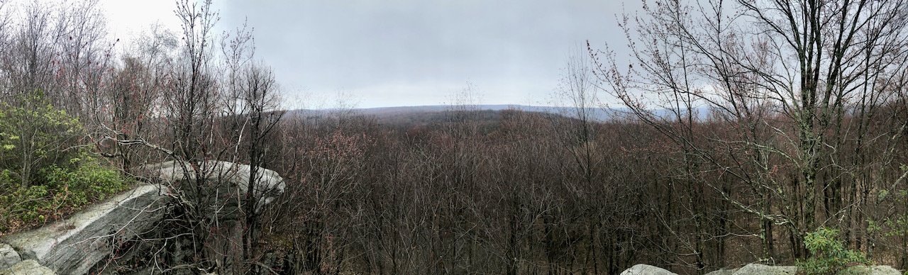 Photo of a vista with barren trees and some mountains in the distance